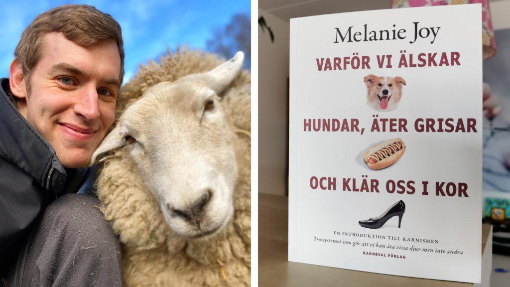 Ljudboksmakaren Markus Tufvesson tillsammans med fåret Eira och Melanie Joys bok som finns tillgänglig från idag.
